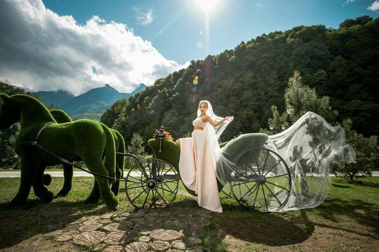 Bild 5: Deko Werbe Gartenfigur Pferdekutsche Topiary