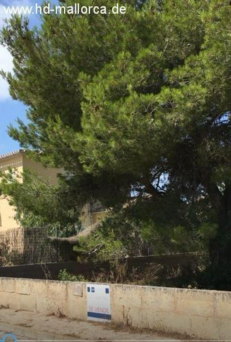 Grundstueck in 07639 - Vallgornera - Grundstück kaufen - Bild 1