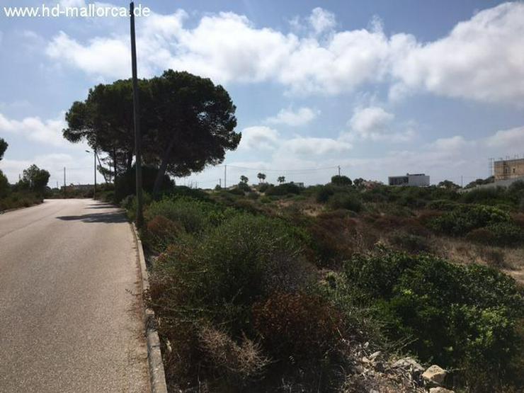 Bild 3: Grundstueck in 07639 - Vallgornera