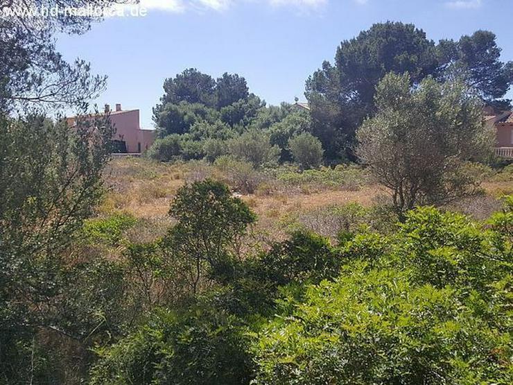 Bild 9: Grundstueck in 07639 - Vallgornera