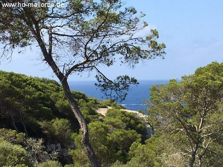 Bild 1: Grundstueck in 07639 - Vallgornera