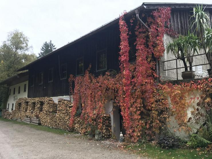Bild 2: Günstige Monteurzimmer in der Bergpension Maroldhof
