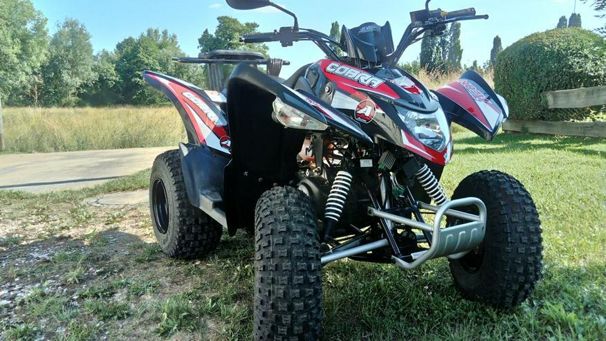 Quad Aeon Cobra 50ccm