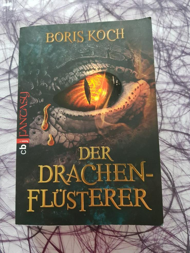 Boris Koch Der Drachenflüsterer - Romane, Biografien, Sagen usw. - Bild 1