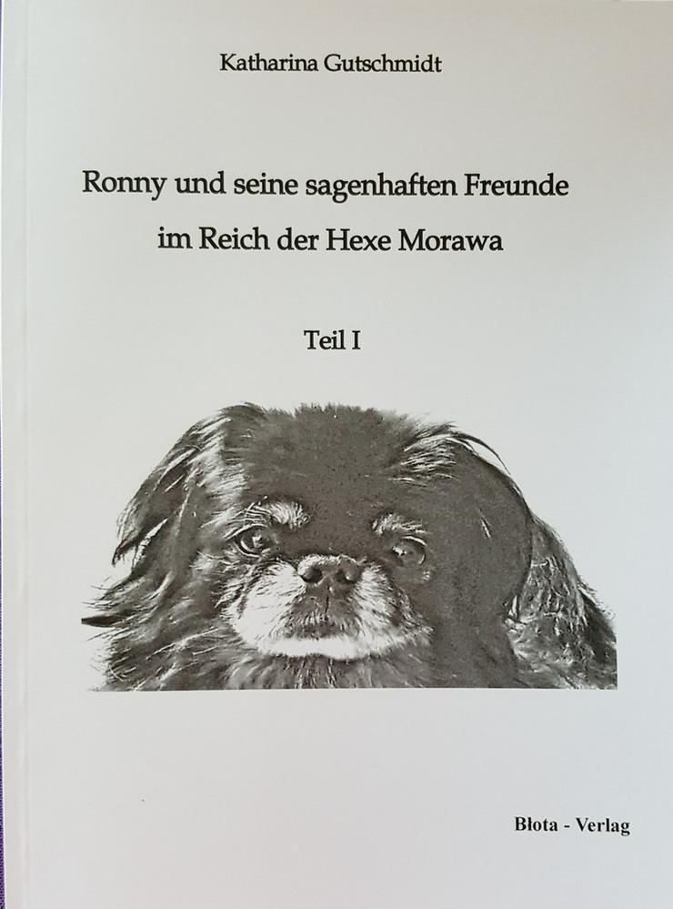 Kinderbuch (ab 11 J.) / Märchen/ Zauberwelt