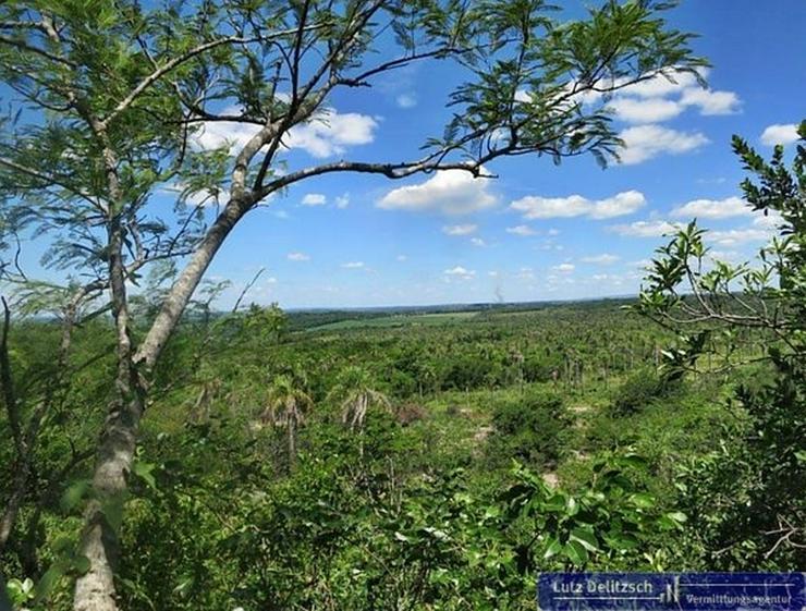 Großes Grundstück mit schöner Aussicht - Grundstück kaufen - Bild 1