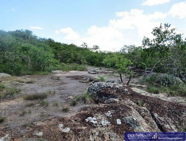 Bild 2: Großes Grundstück mit schöner Aussicht