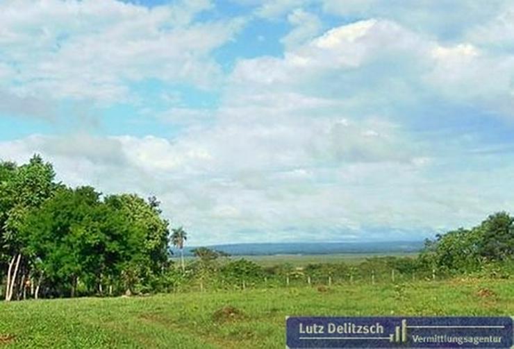 Granja in Paraguay, Ihre neue Existenz?