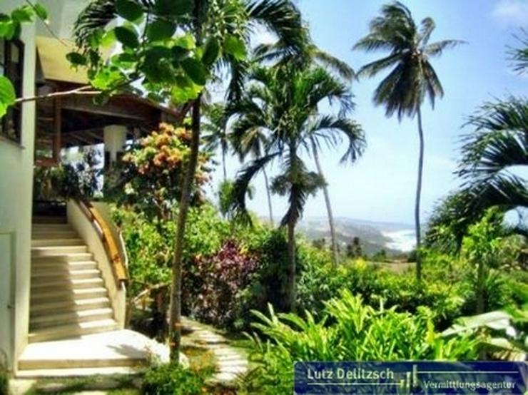 Bild 6: Luxus-Villa mit Pool und Meerblick auf Barbados