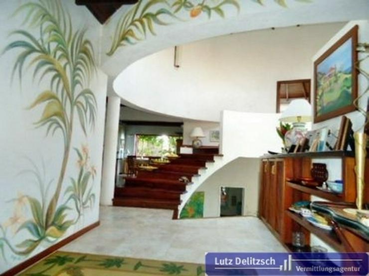 Bild 3: Luxus-Villa mit Pool und Meerblick auf Barbados
