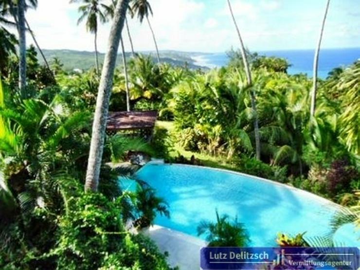 Bild 5: Luxus-Villa mit Pool und Meerblick auf Barbados