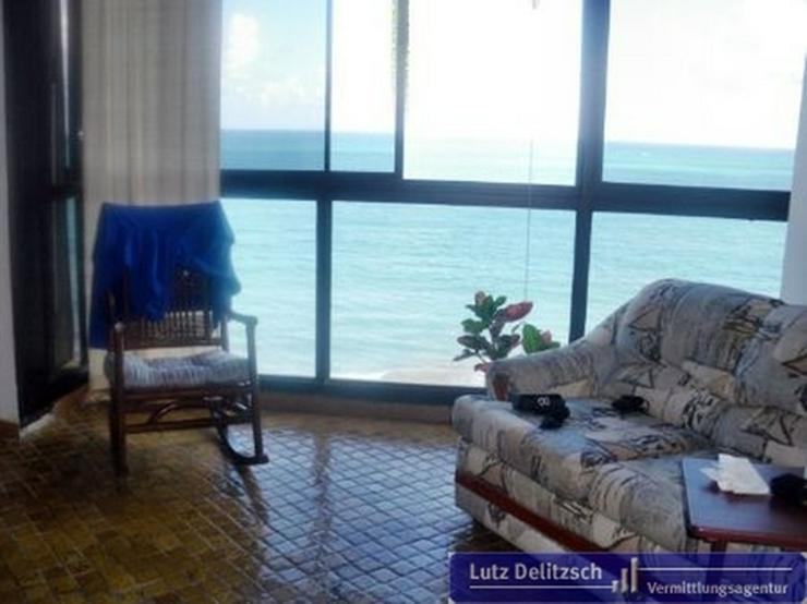 Bild 2: Appartement direkt am Strand in Puerto Rico