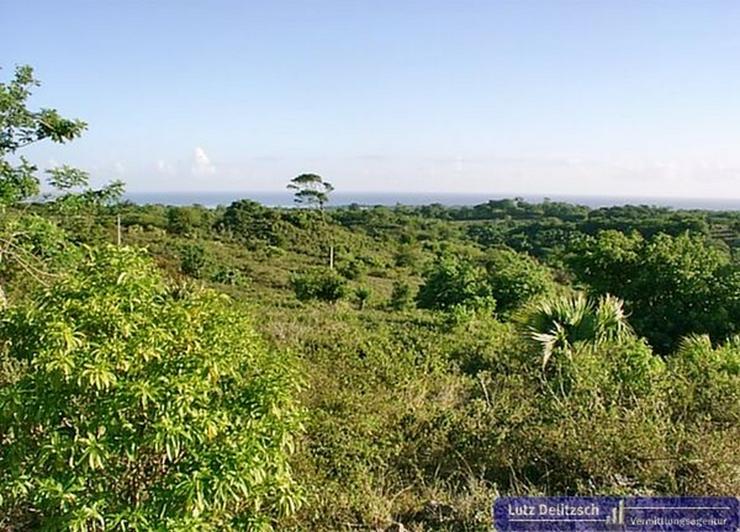 Großes Grundstück mit Meerblick - Grundstück kaufen - Bild 1