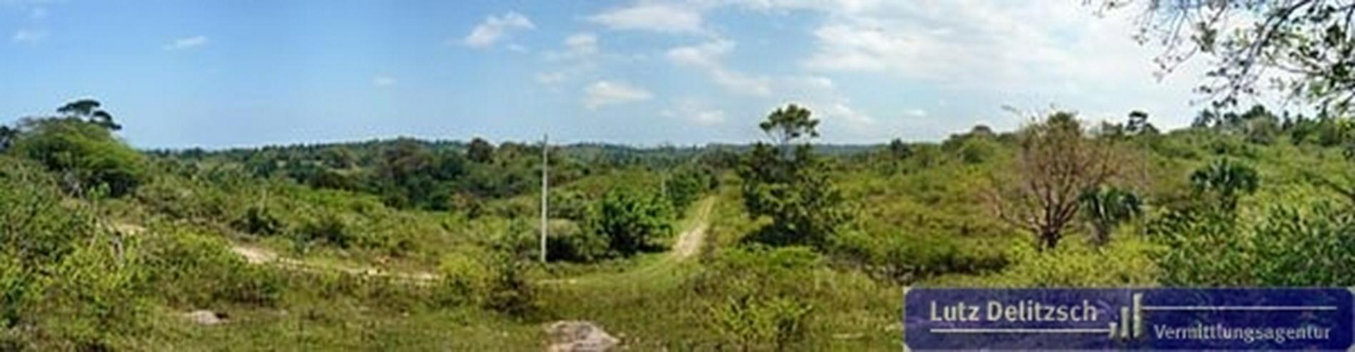 Bild 2: Großes Grundstück mit Meerblick