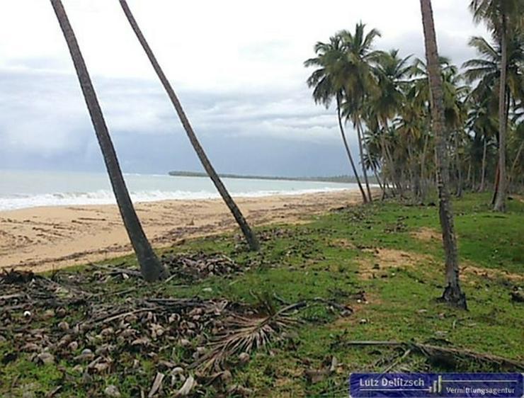 Bild 2: Strandgrundstück an der Playa Limon, mit Teilfinanzierung