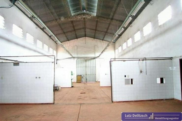 Bild 2: Grundstück inkl. Fabrikgebäude in guter Lage
