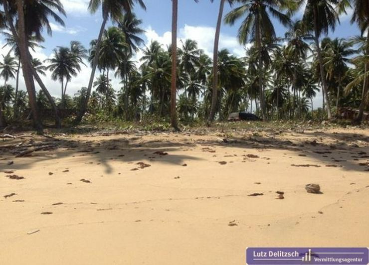 Bild 4: Großes Baugrundstück in direkter Strandlage