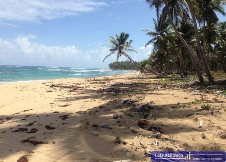 Bild 2: Großes Baugrundstück in direkter Strandlage