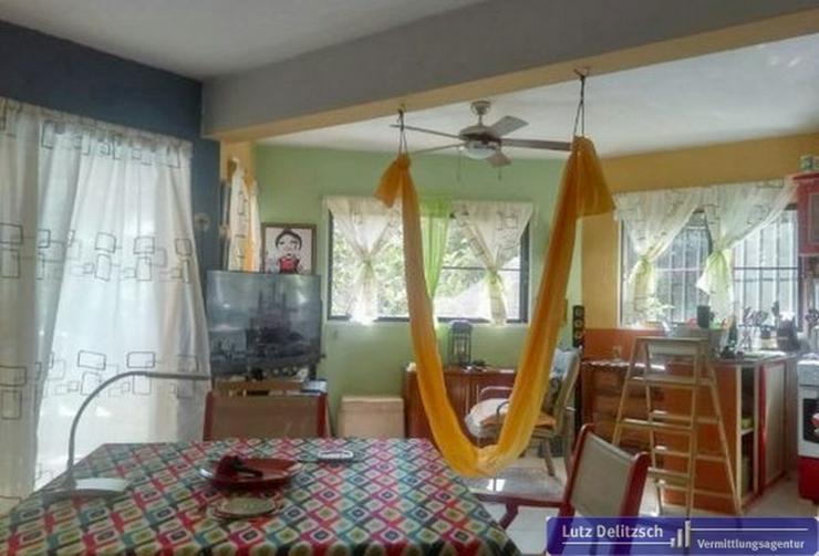 Appartement, komplett möbliert - Wohnung kaufen - Bild 1