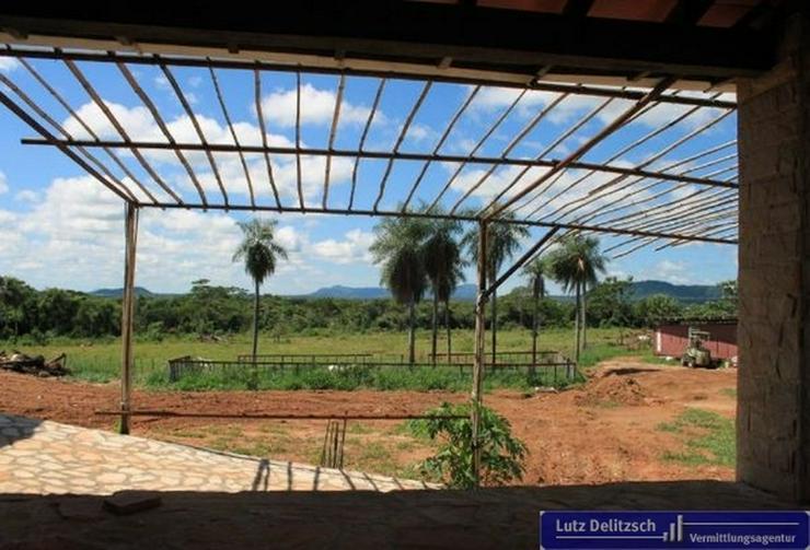 Bild 5: Haus mit großem Grundstück in Carapegua