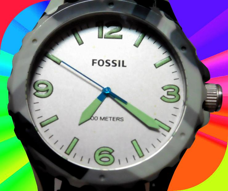 FOSSIL JR1464, Uhr, Armbanduhr