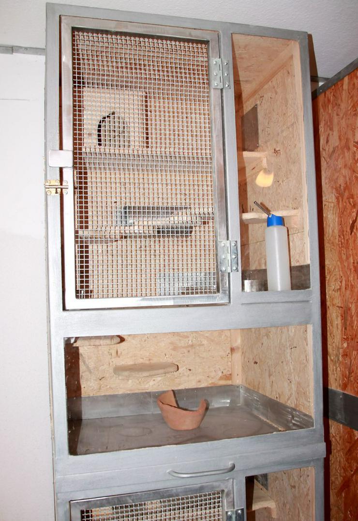 Bild 2: Käfig für Chinchillas - 1 oder 2 Boxen