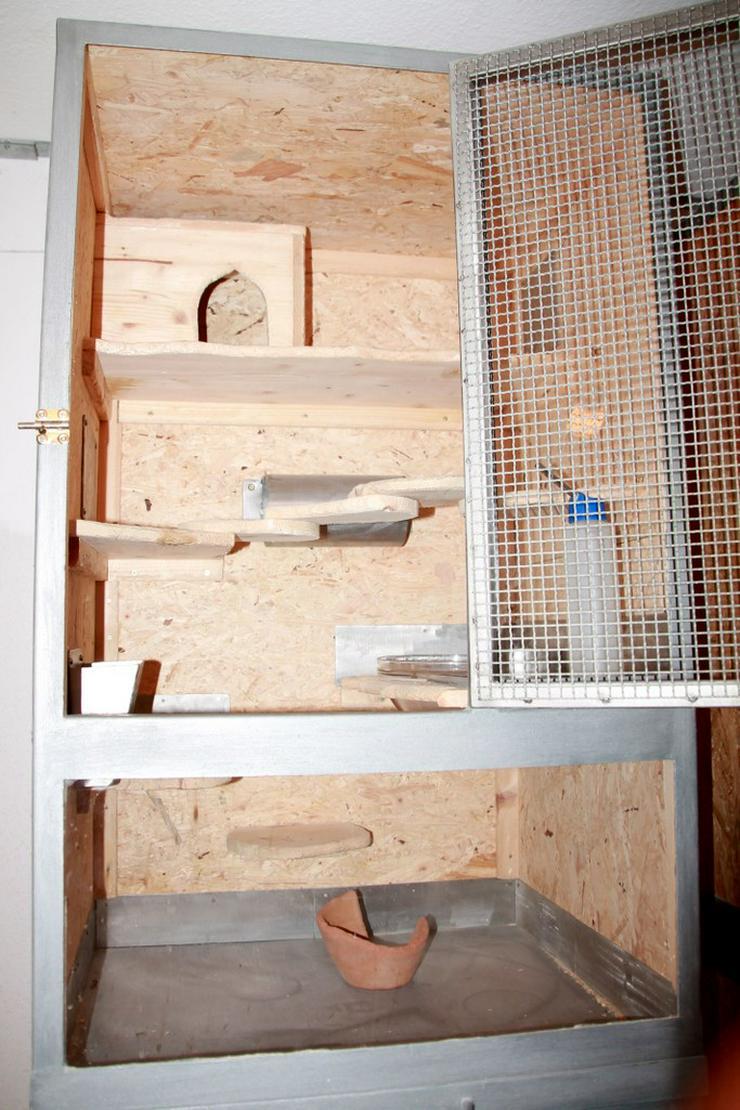 Bild 3: Käfig für Chinchillas - 1 oder 2 Boxen