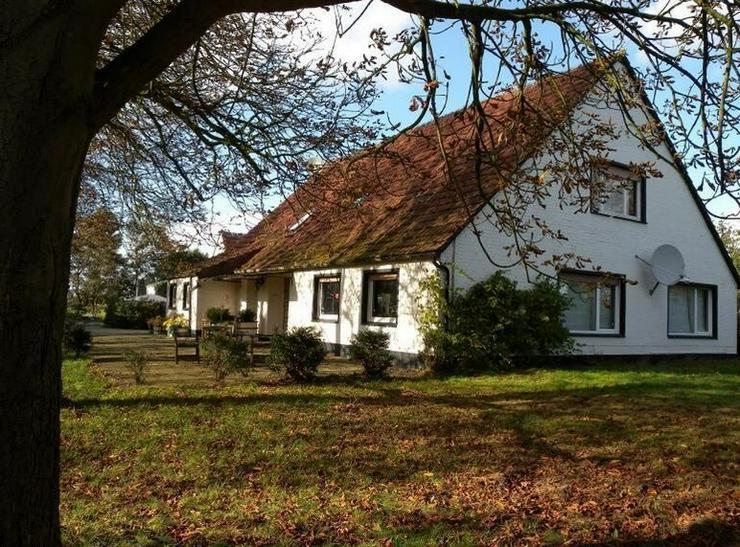 Bild 4: Landhaus mit riesiger Wohnfläche und Laufabstand zur Holländischen Grenze in Ringe