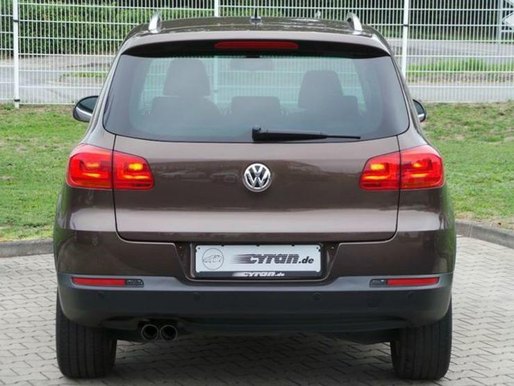 Bild 5: Volkswagen Tiguan 2.0 TDI 4MOTION Track & Field PDC Kurvenlicht Klima DPF