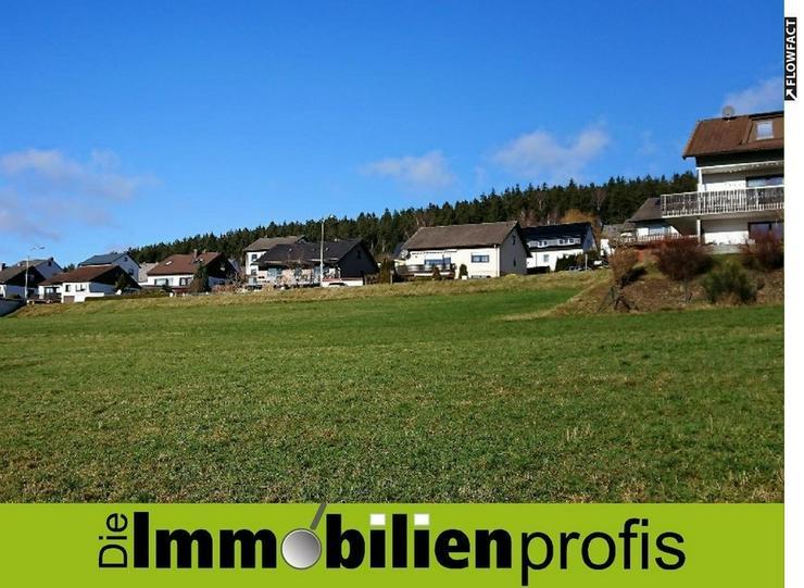 Drei herrliche Baugrundstücke mit insges. ca. 2.760 m² in Naila