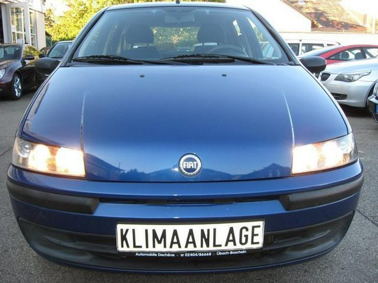 Bild 3: FIAT Punto Lim. 1.2 8V Sole 5-Türer mit Klima
