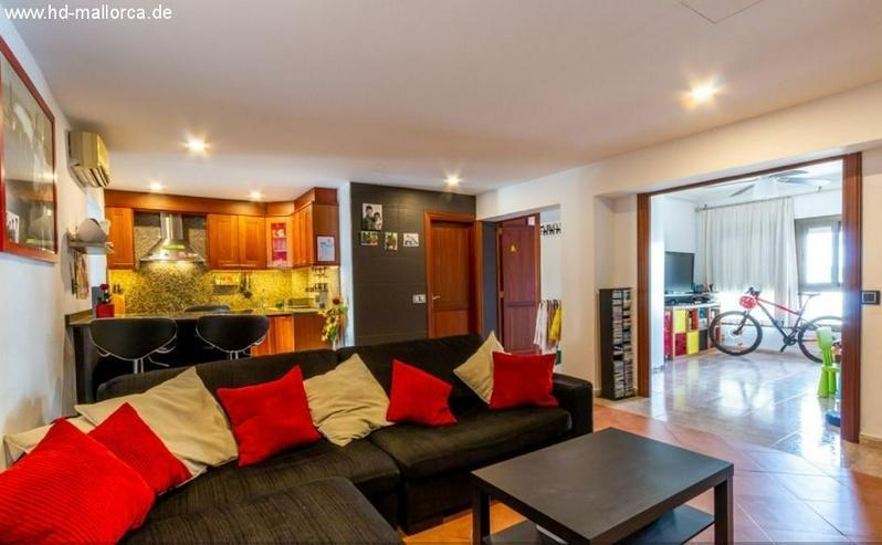 : Wohnung - Palma de Mallorca (Camp Redó)