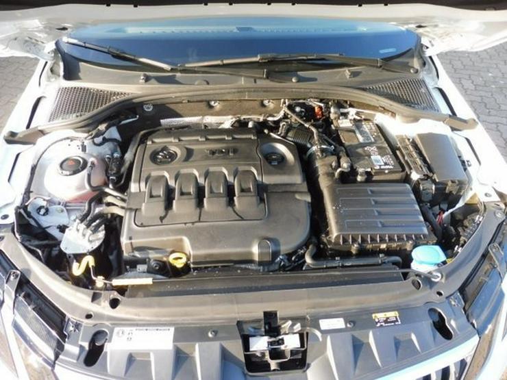 Bild 15: SKODA Octavia Combi DRIVE 2.0 TDI FACELIFT +NAVI/PANO
