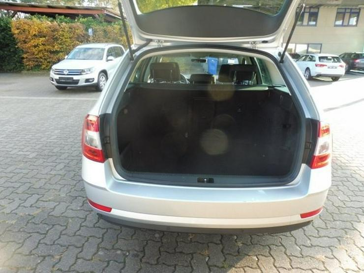 Bild 13: SKODA Octavia Combi DRIVE 2.0 TDI FACELIFT +NAVI/PANO