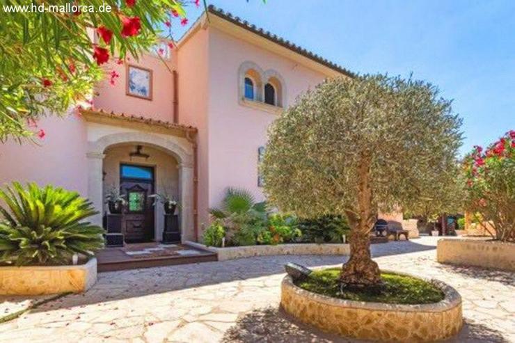 :Schöne Villa in ruhiger Lage von Vallgornera