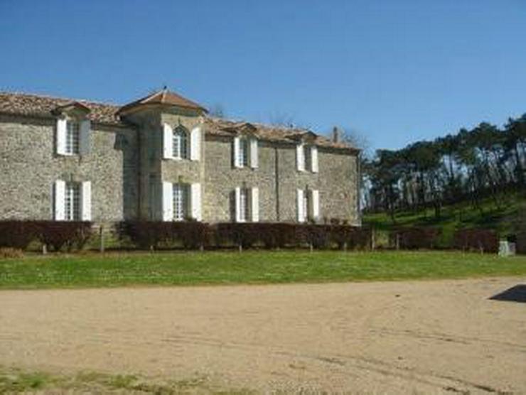 Bild 5: Les Salles de Castillon Schloss (St Emilion)