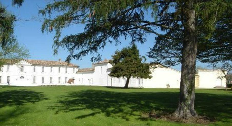 Bild 2: Les Salles de Castillon Schloss (St Emilion)