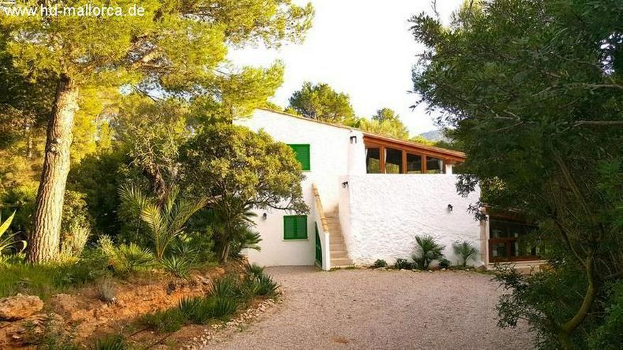 : Ein ruhiges Haus in Port Andratx