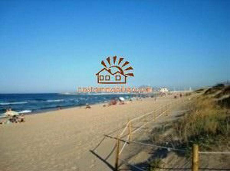 Bild 2: 1. Meerlinie - Grundstück mit 3.500 m² in Oliva Nova/Alicante, teilbar in 10 Einheiten!!