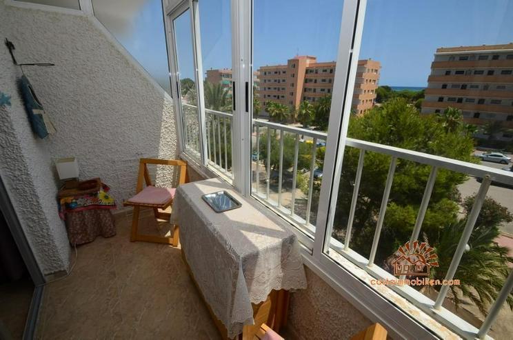 Bild 2: Apartment mit 1 Schlafzimmer in Pinomar-Guardamar/Alicante