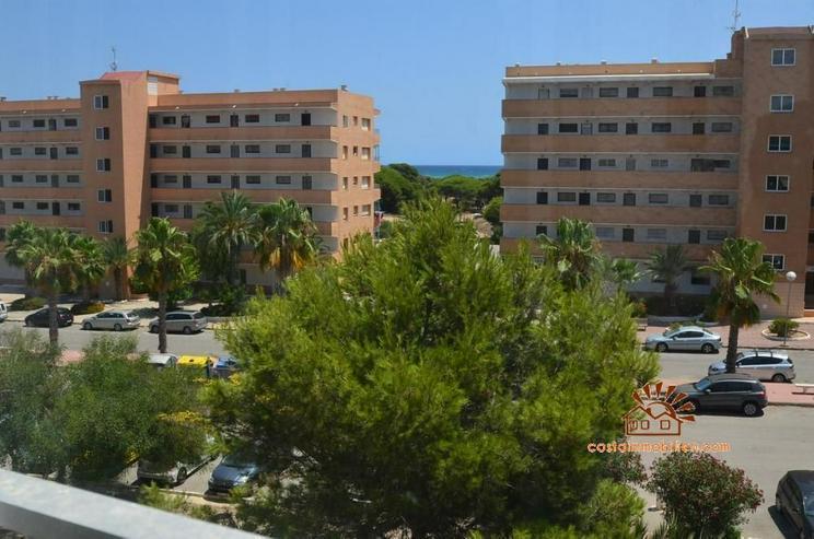 Bild 4: Apartment mit 1 Schlafzimmer in Pinomar-Guardamar/Alicante