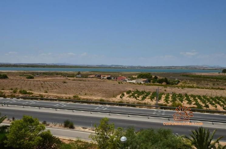 Bild 3: Apartment mit 1 Schlafzimmer in Pinomar-Guardamar/Alicante