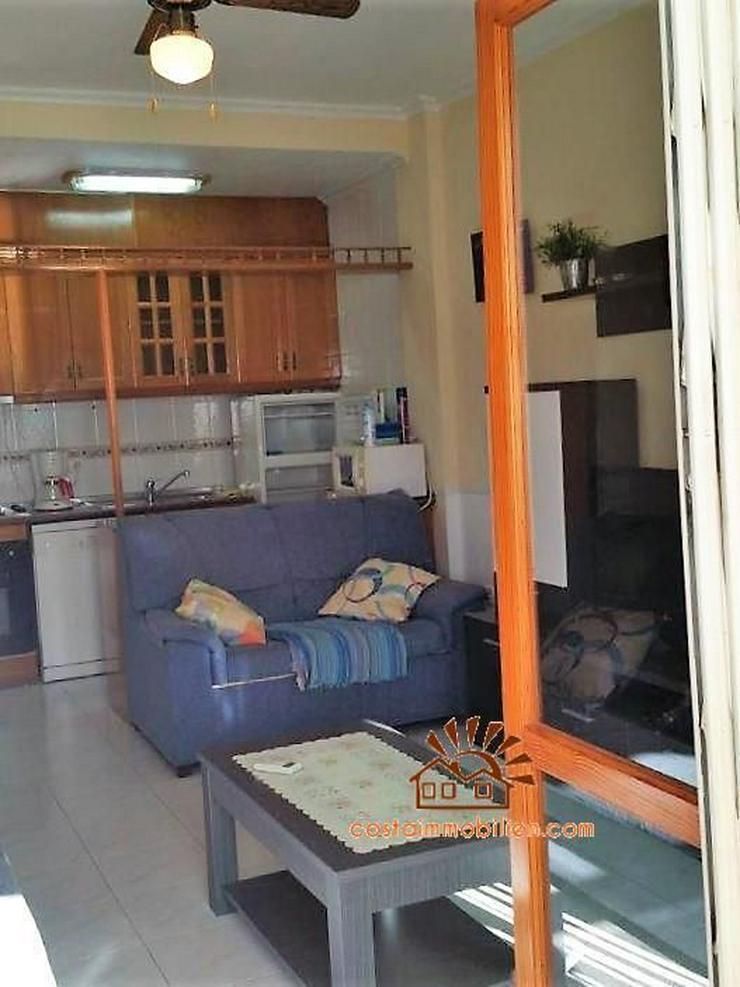 Bild 6: Apartment mit Pool