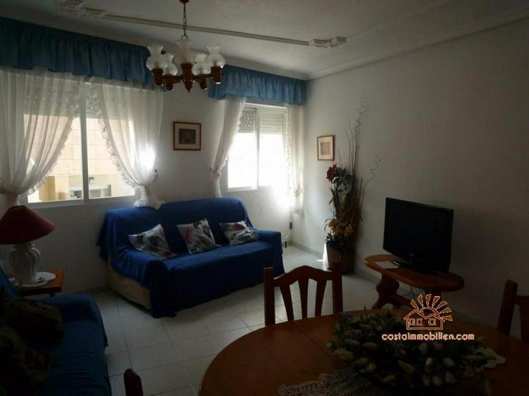 Bild 4: 200 Meter zum Strand 3 Zimmer Wohnung in La Mata - Torrevieja/Alicante