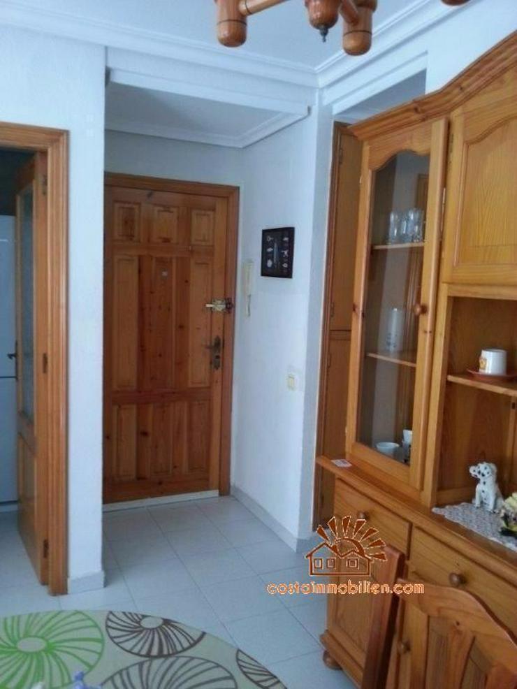 Bild 5: 200 Meter zum Strand 3 Zimmer Wohnung in La Mata - Torrevieja/Alicante
