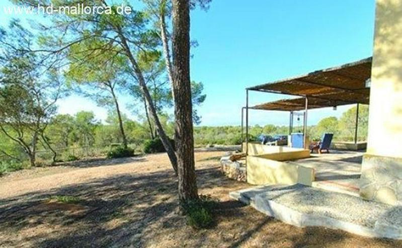 Bild 2: : Einsames Landhaus in traumhafter Lage von Algaida