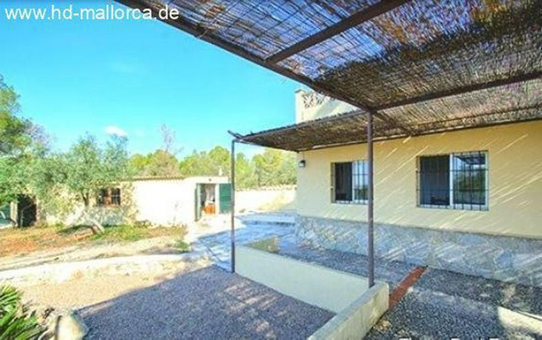 : Einsames Landhaus in traumhafter Lage von Algaida - Haus kaufen - Bild 1