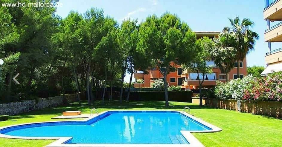 Bild 3: : Wunderschöne Erdgeschoss-Ferienwohnung mit Garten im Süden von Mallorca