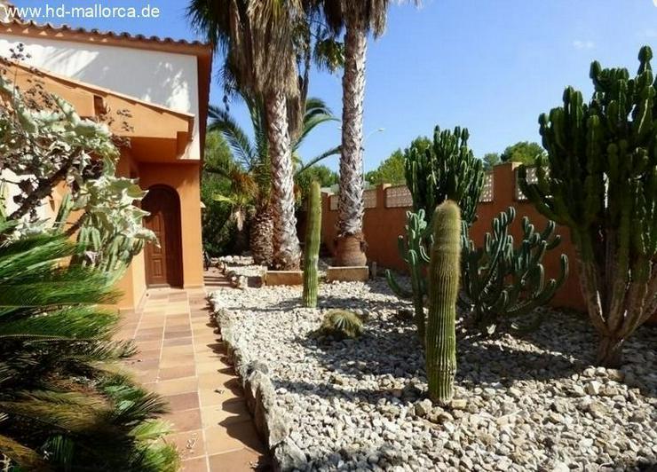 Bild 3: : Mediterrane Villa im Finca-Stil mit Bergblick