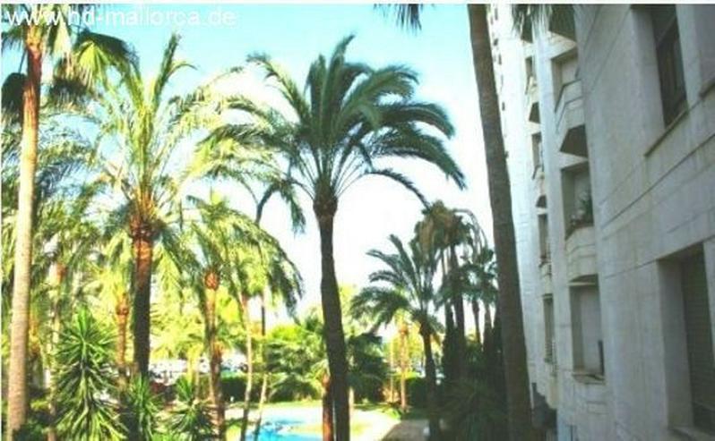 : herrliche Wohnung mit Blick auf Pool und Garten in hervorragender Lage in Palma